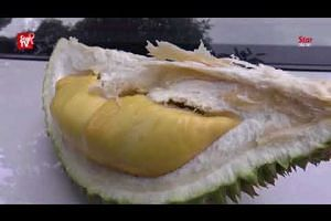 Durian fest in Bentong aims to attract 50,000 visitors
