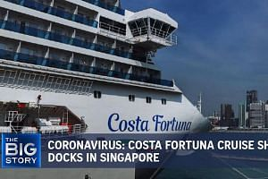 Coronavirus: Costa Fortuna cruise ship docks in Singapore | THE BIG STORY | The Straits Times