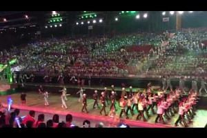 Chingay performances at the National Education show preview at F1 Pit Building (1)