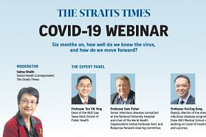 ST webinar: Covid-19, six months on