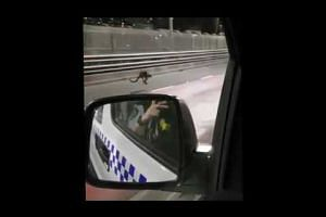 Police chasing a wallaby along the Sydney Harbour Bridge