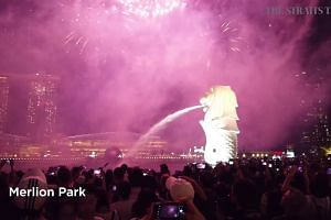 National Day Parade 2019: Best spots to catch the fireworks