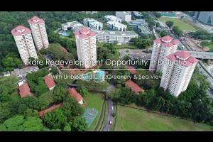 Normanton Park, Singapore – En Bloc Redevelopment Opportunity