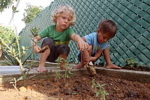 The Garden House Preschool children such as Deklan Arleth (left) and Johan Larson, both three, spend time outdoors each day.