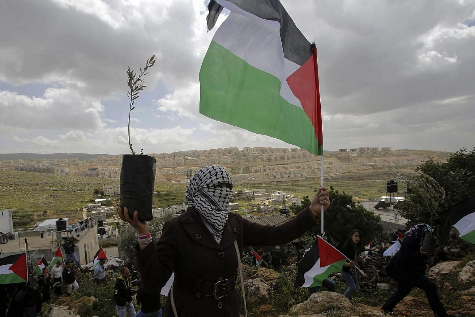 Palestinian protesters from the village of Wadi Fukin carry olive trees and Palestinian flags as they mark the anniversary of Land Day near the Israeli settlement of Beitar Illit on March 30, 2015. Palestine formally joined the International Cri