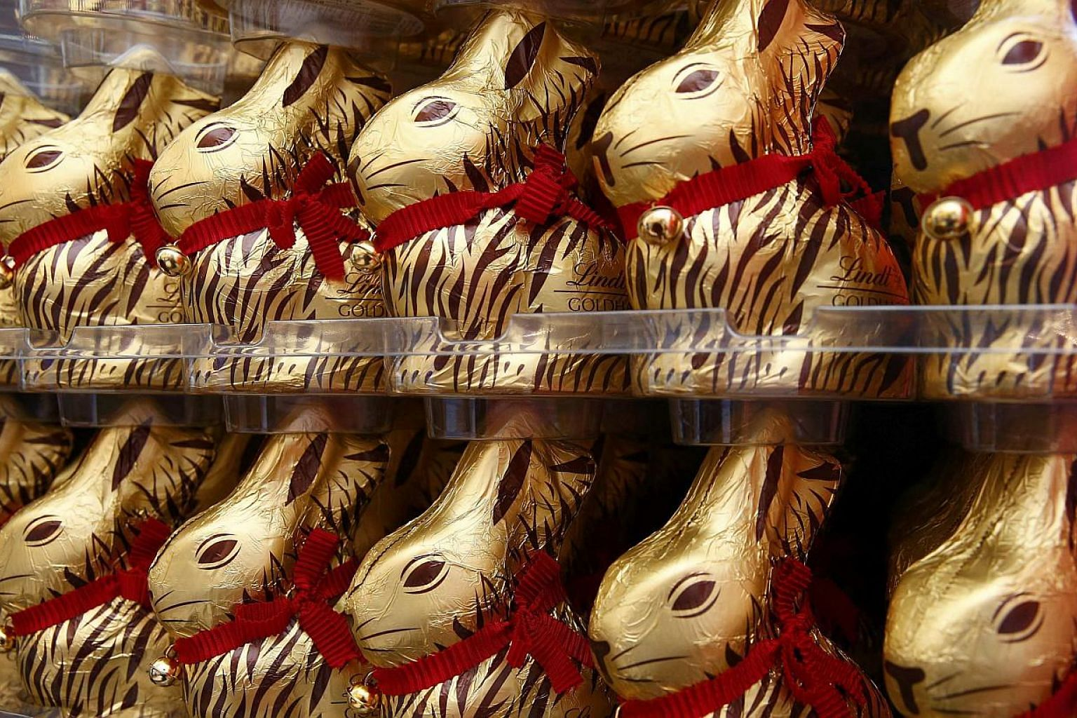 Gold-wrapped Easter chocolate bunnies are displayed during the annual news conference of Swiss chocolatier Lindt & Spruengli in Kilchberg near Zurich on March 10, 2015. --PHOTO: REUTERS