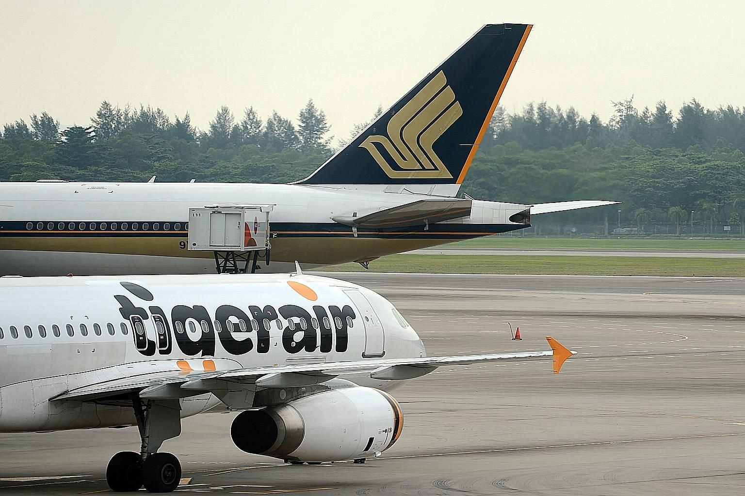 SIA lodged the takeover offer for Tigerair on Nov 6, with the aim of delisting the budget carrier and taking it private.
