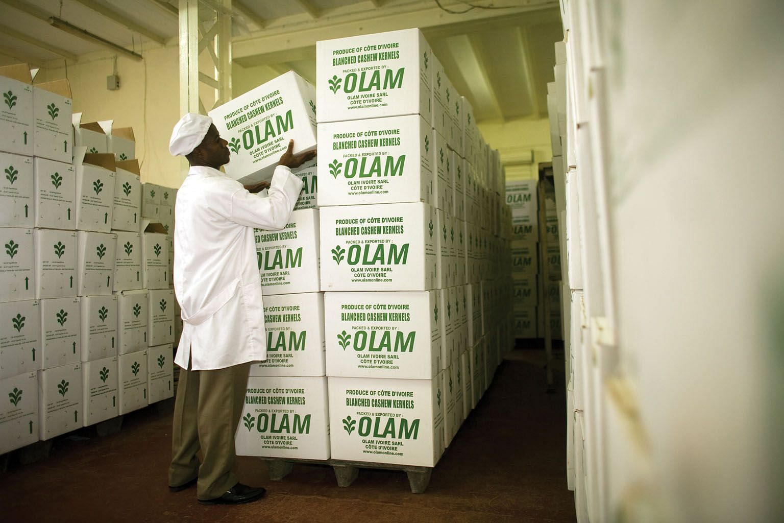 A worker moving boxes of cashew kernels at Olam International's Ivory Coast factory in West Africa.