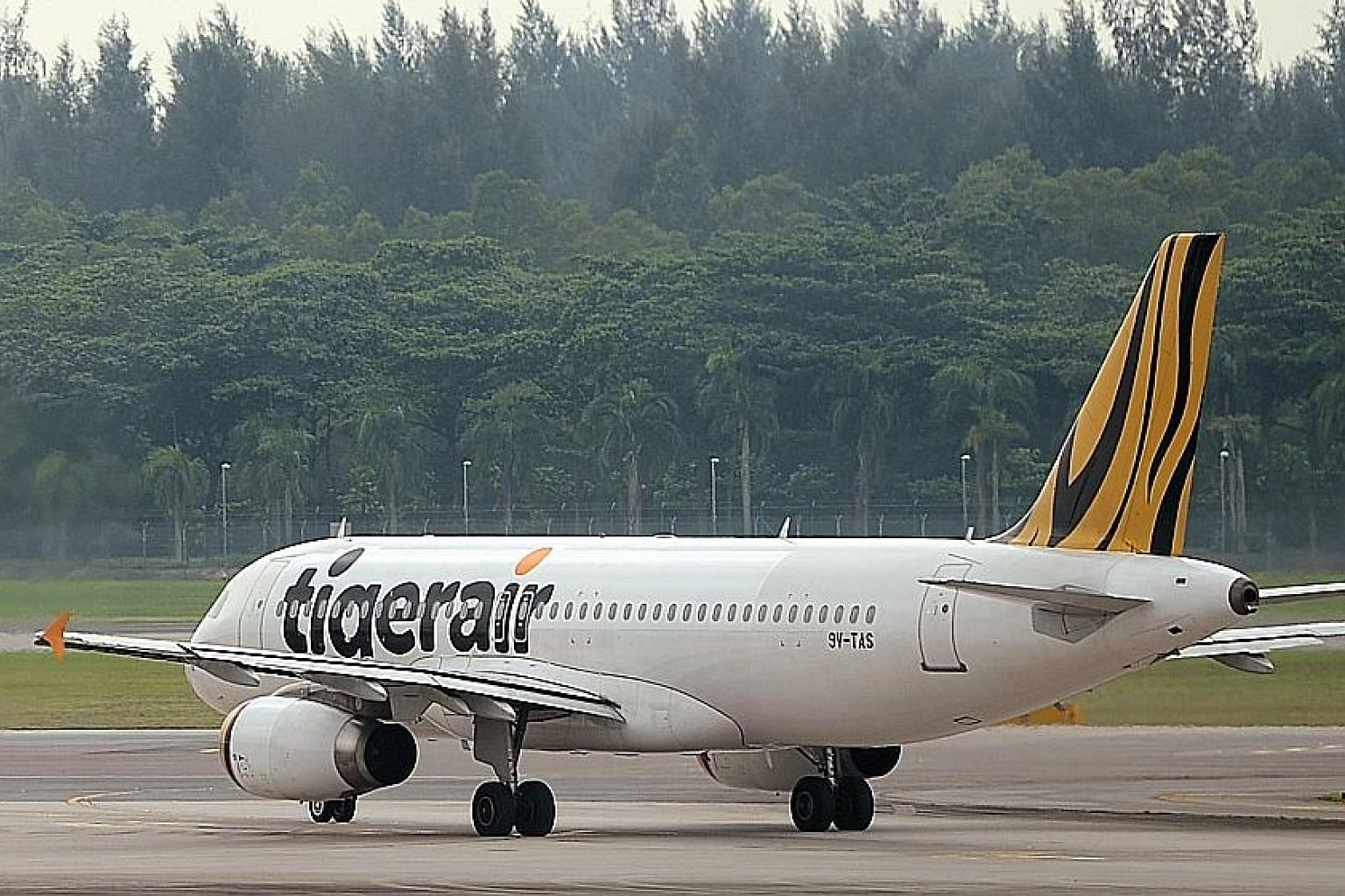 Budget carrier Tigerair posted better revenues off an improvement in yields and load factors.