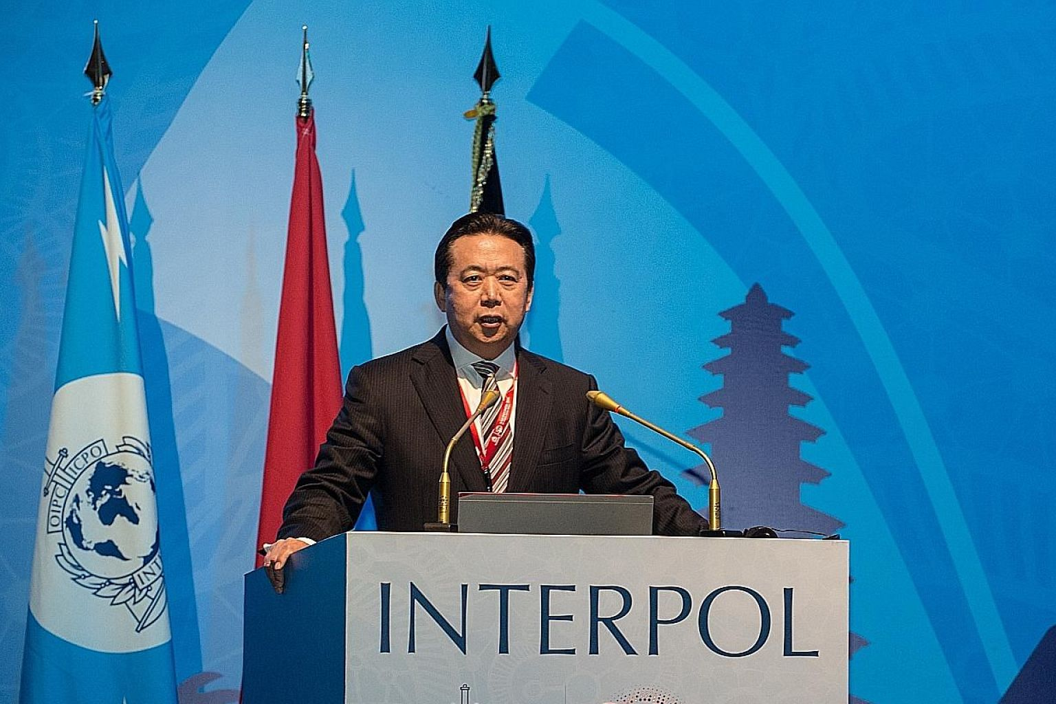China's Vice-Minister for Public Security Meng Hongwei was picked to take the helm of the global police cooperation agency for a four-year term.
