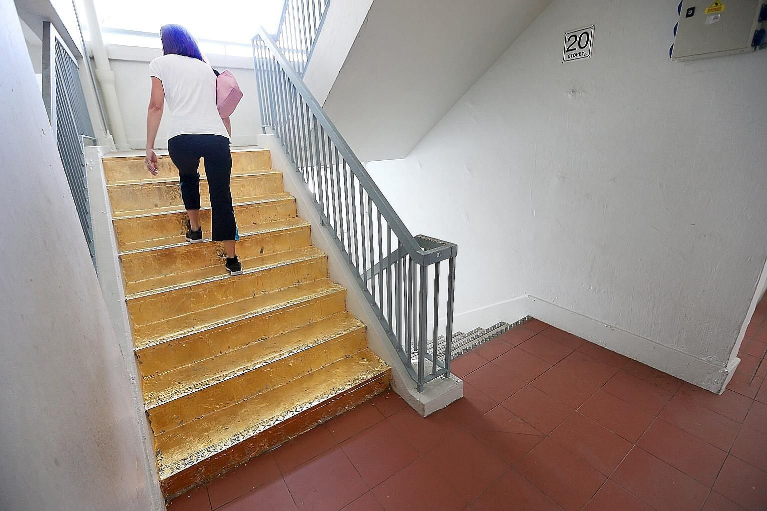 After pictures of it went online on Monday, the flight of stairs covered with gold foil in a Jalan Rajah block spurred debate in the House yesterday.