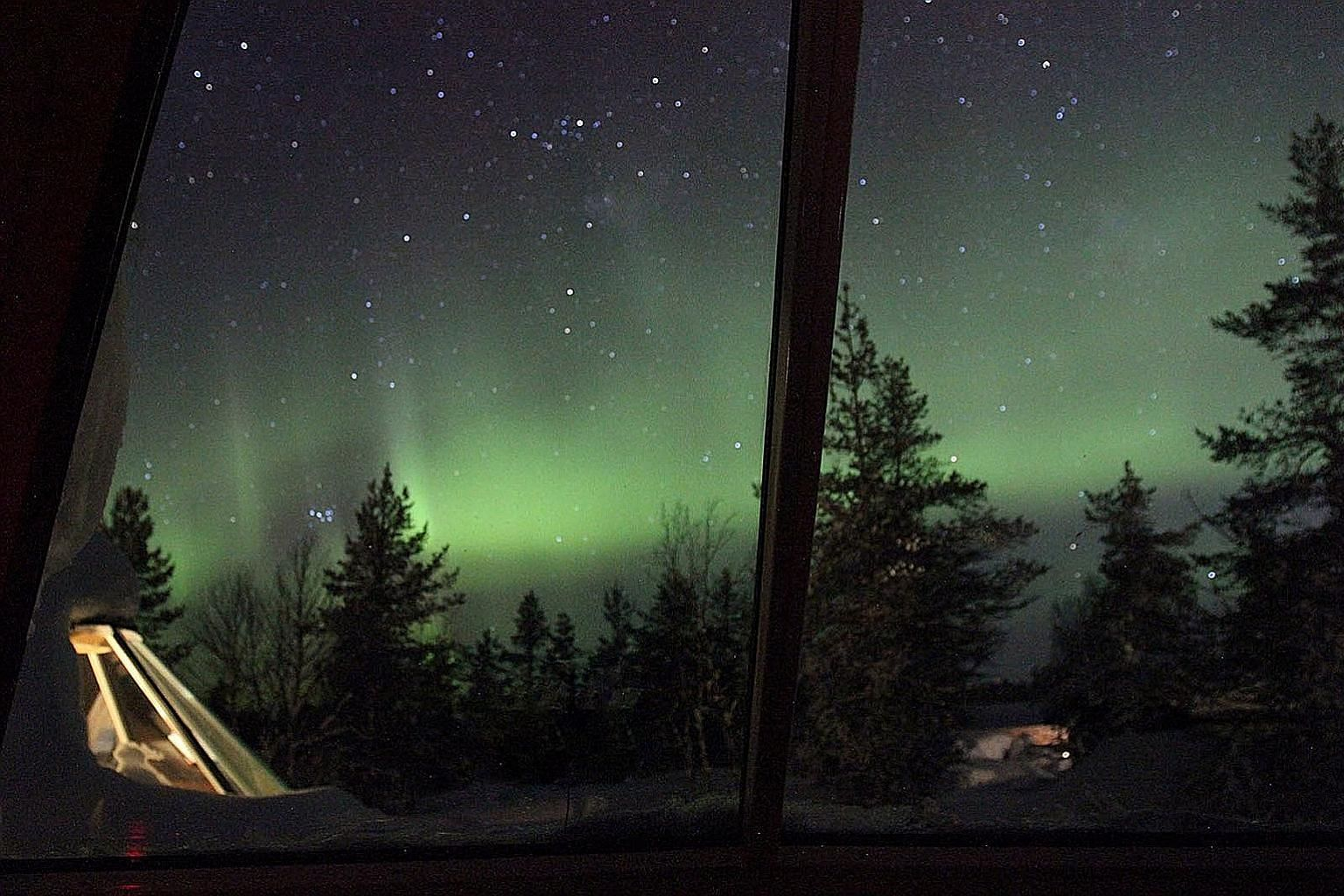 Travellers can catch a glimpse of the aurora borealis (above) at a forest resort in Saariselka, Finland, and lucky ones on the North Cape tour might spy elk.