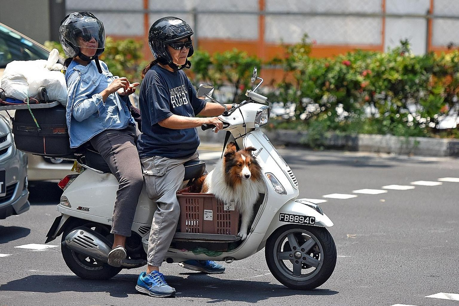 The record-high COE for bikes was due partly to buyers downgrading to smaller models after heftier taxes were imposed on bigger motorcycles in February, said the Singapore Motorcycle Trade Association's Mr Norman Lee.