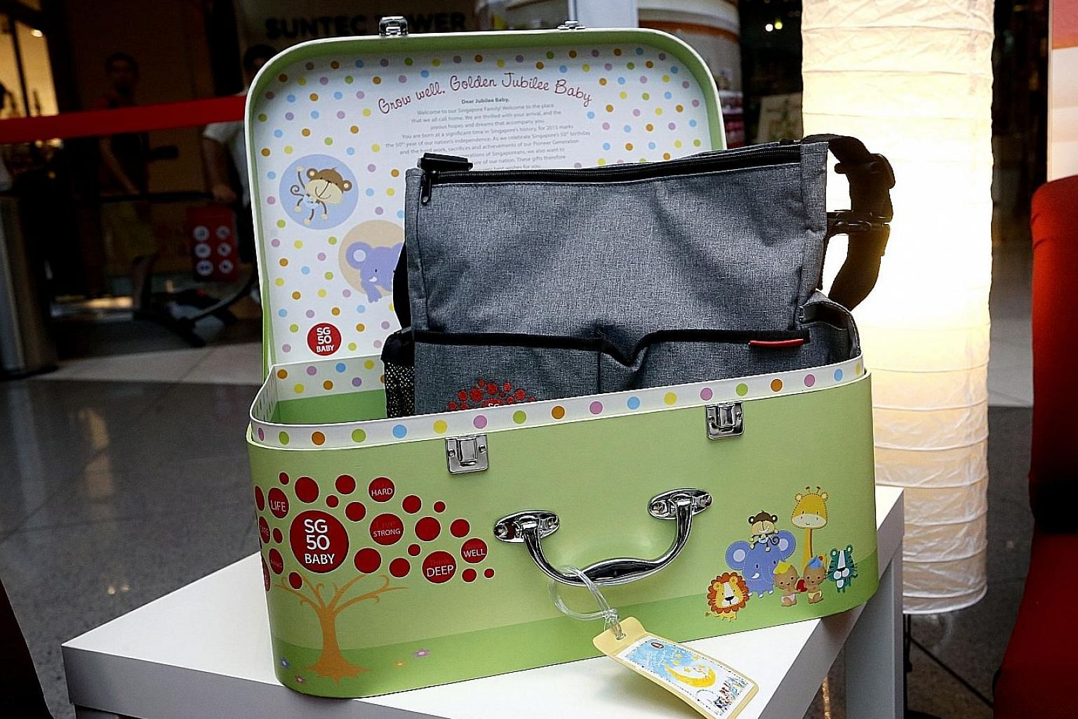 One of the eight items - a diaper bag - in the SG50 Baby Jubilee Gift suitcase. Parents of about 340 babies born in 2015 and eligible for the gift have not registered to receive it.