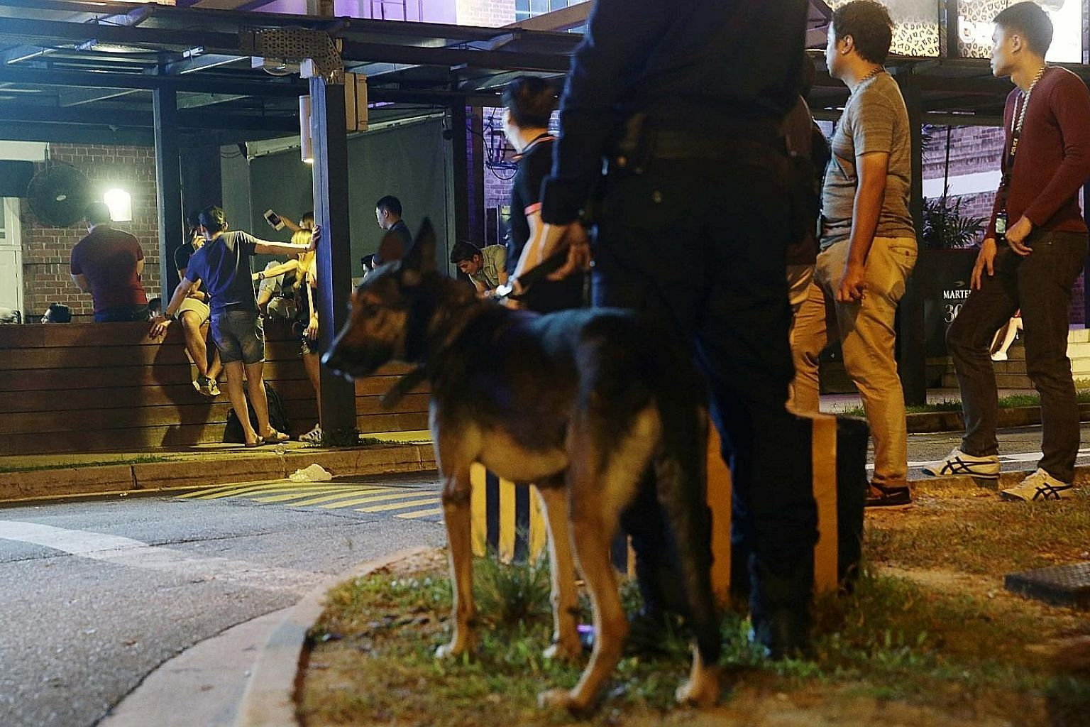"""""""Suitably trained individuals"""", who may include auxiliary police or retired police officers, can be appointed as """"authorised persons"""" allowed to conduct inspections of public entertainment establishments, such as nightspots, and events."""