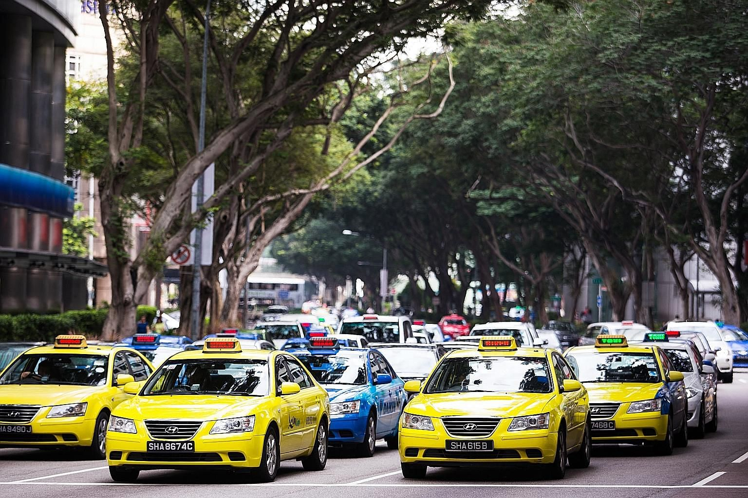 ComfortDelGro, which manages both the yellow CityCab and blue Comfort taxis, saw its revenue slide by 2.4 per cent to $972 million. Group operating expenses shrank by 1.7 per cent to $871.5 million.