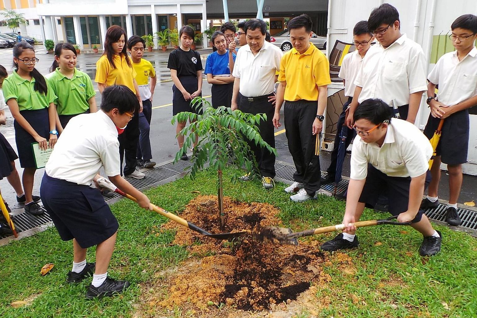 Students from Juying Secondary School planting a tree as part of Biodiversity Week last year. The event was started in 2015 as Biodiversity Week for Schools, with workshops designed for students, from pre-school to secondary school. It was expanded l