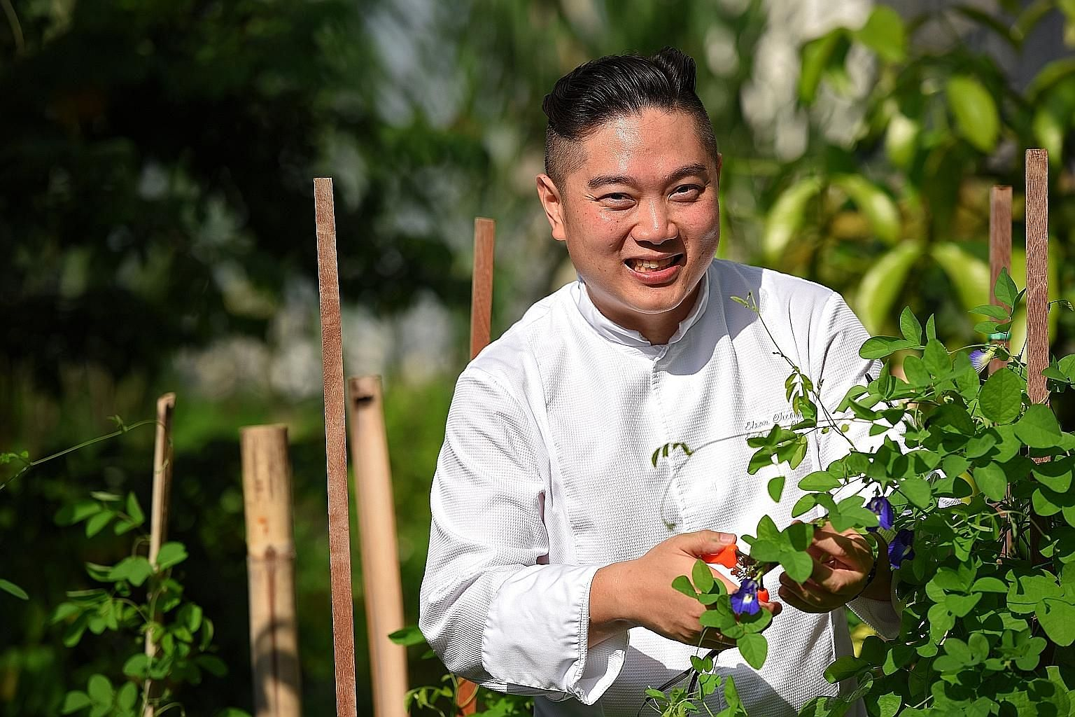 Chef Elson Cheong with butterfly pea flowers at the farm of One Farrer Hotel & Spa.