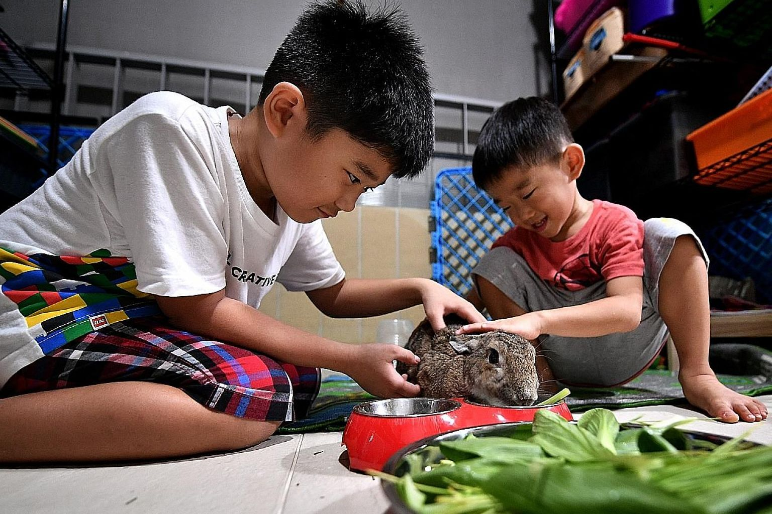 Brothers Lucas (left) and Lewis Tan help to feed and clean their three house rabbits. Mr Pragalathan Ramiah and his wife, Lalitha, train their daughters Shaistha, nine, and Tishah, four, to help care for their pet dog and two cats.