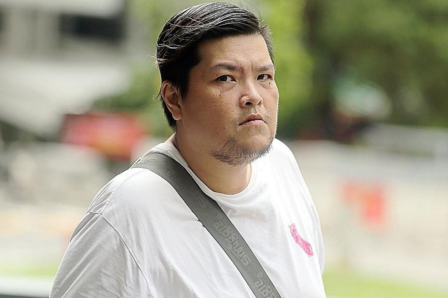 Chong Choom Kiat, who was diagnosed with adjustment disorder with depressed mood, was yesterday ordered to undergo 12 months of mandatory treatment. He was also banned from owning any animal for a year.