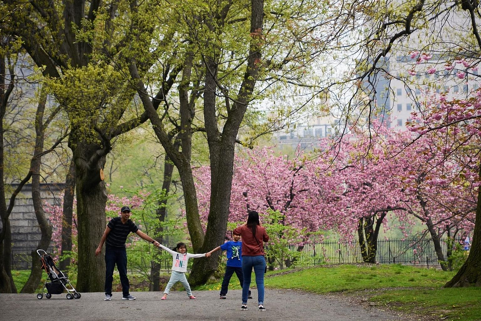 Central Park in New York is a sanctuary in the hustle and bustle of the city.