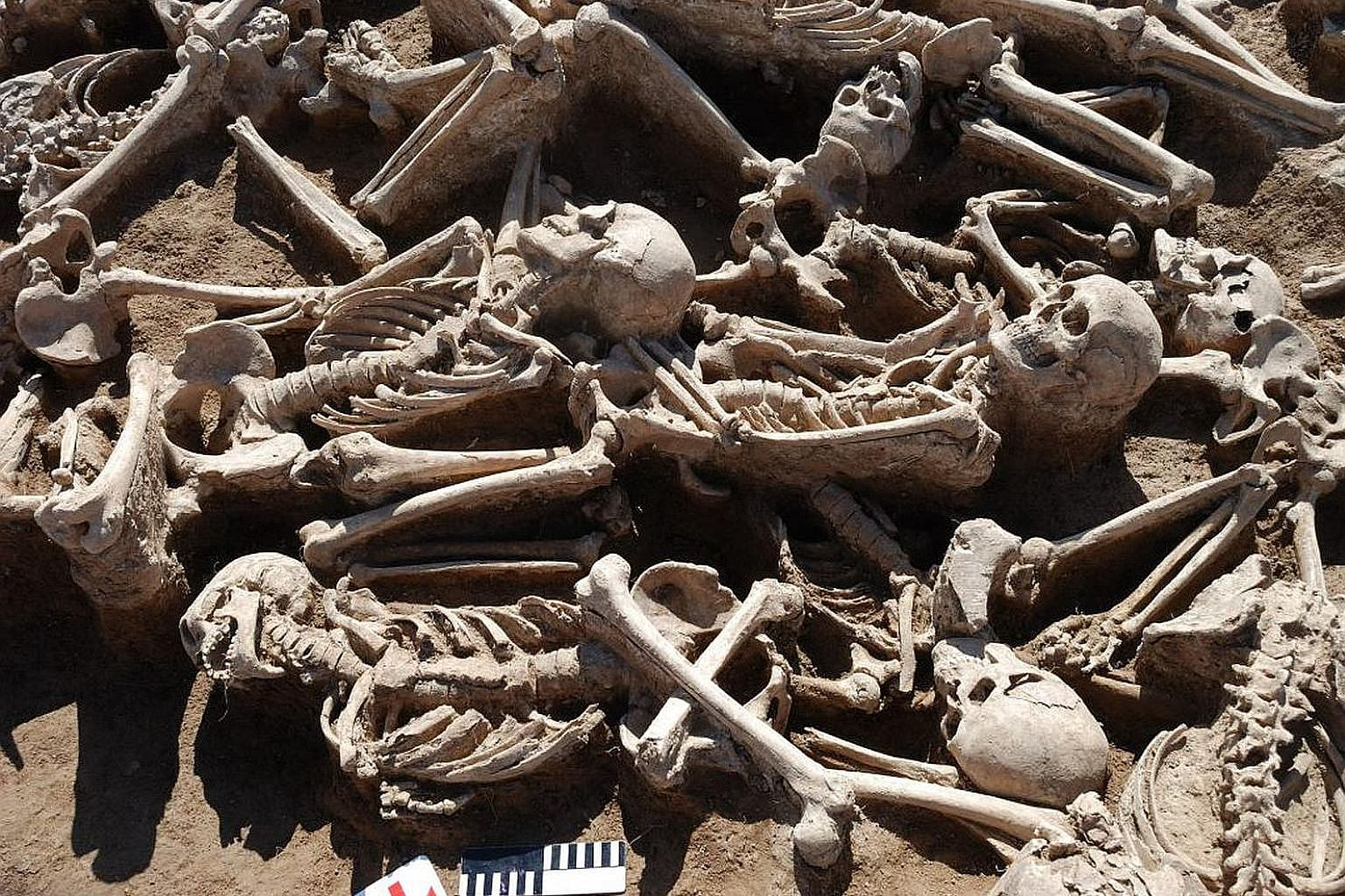 The hepatitis B virus was found in ancient humans, including a warrior buried in this mass grave in Omnogobi, Mongolia.