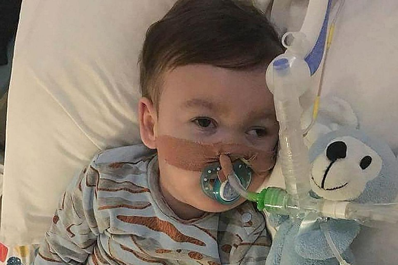 Alfie Evans died in April nearly a week after his life support was withdrawn.
