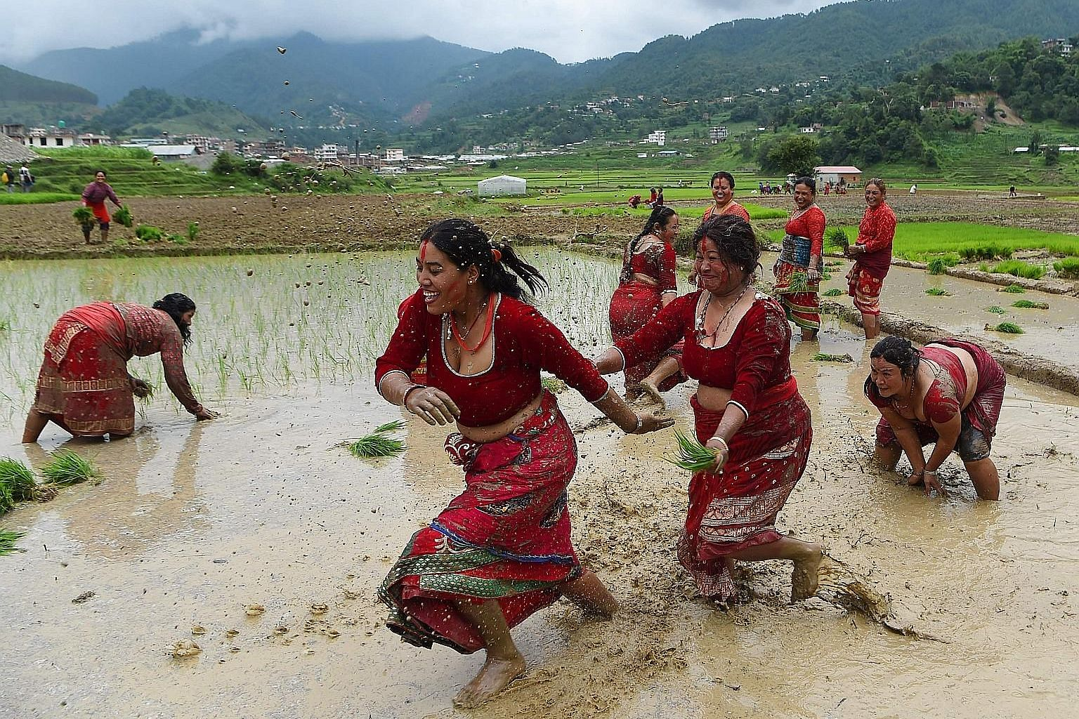 Nepali farmers splashing mud on one another in a rice field during National Paddy Day in Lele village on the outskirts of Kathmandu yesterday. Farmers in Nepal celebrate National Paddy Day as the annual rice-planting season begins.
