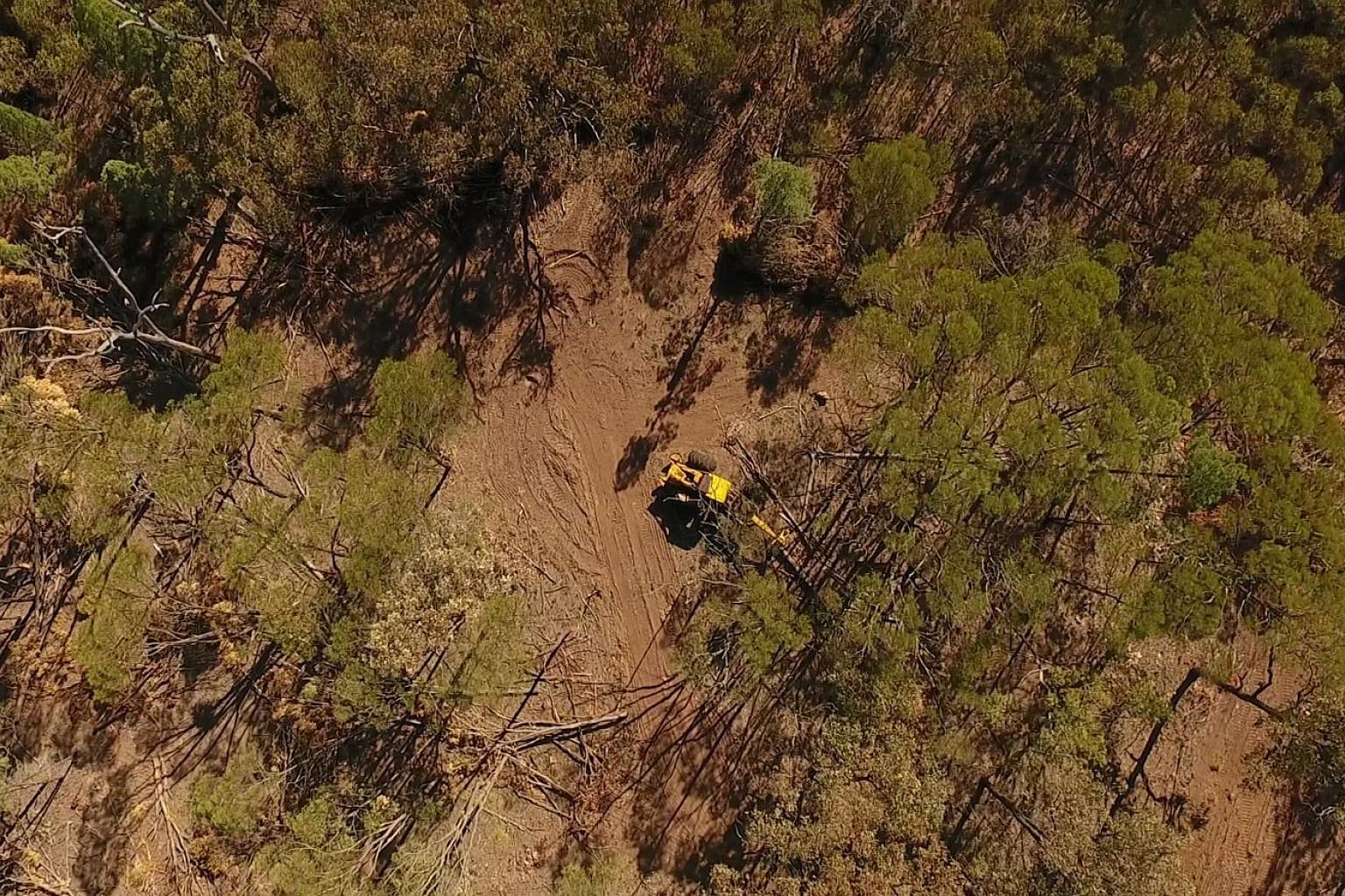 Bulldozing of land in Queensland. Experts say the Australian state, which has about 40 per cent of the country's forests, has been clearing its bushland at a faster rate than Brazil's cutting down of its Amazon rainforest. A report by the Climate Cou