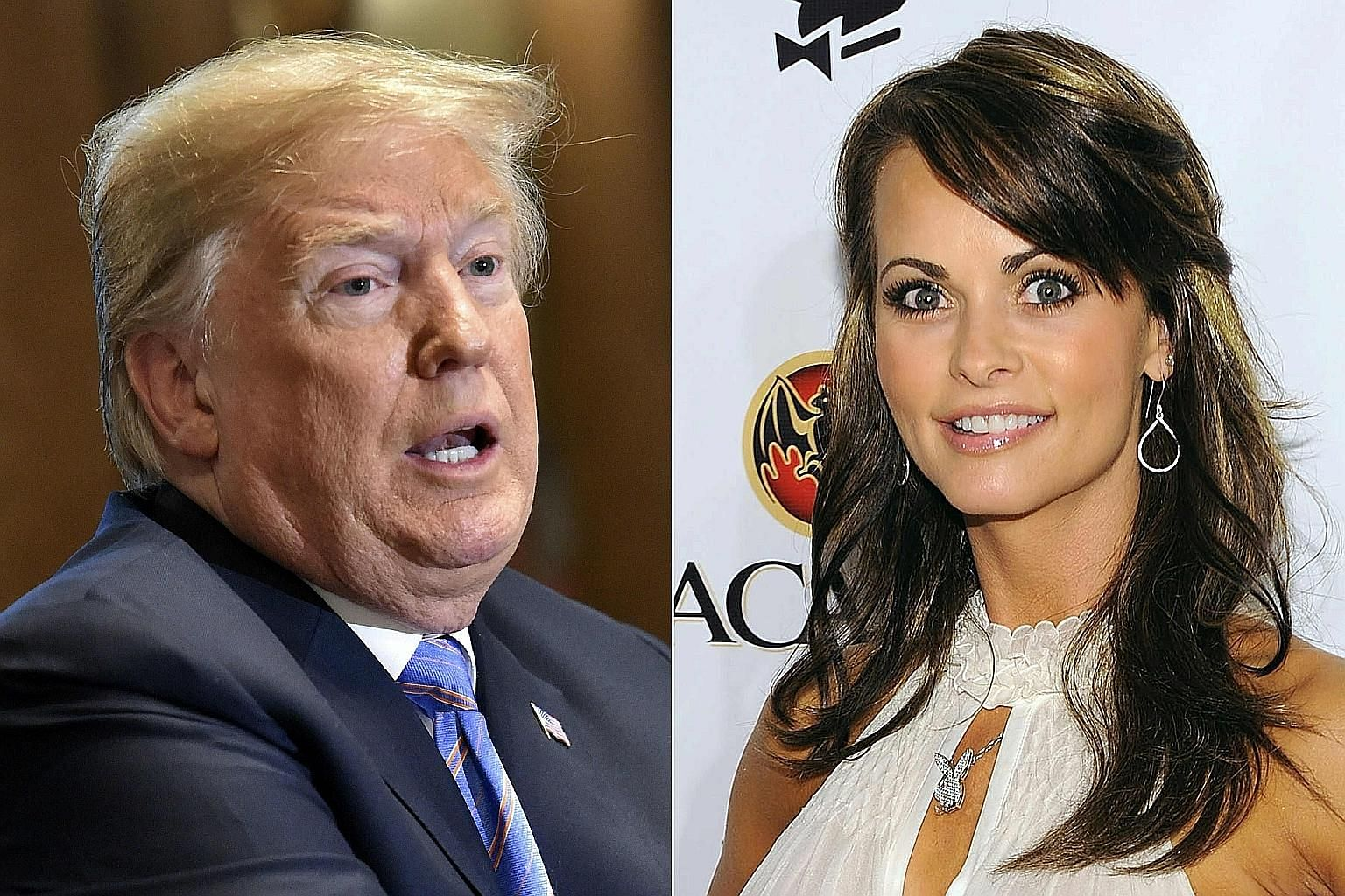 Former Playboy model Karen McDougal says she began a nearly year-long affair with Mr Donald Trump in 2006.