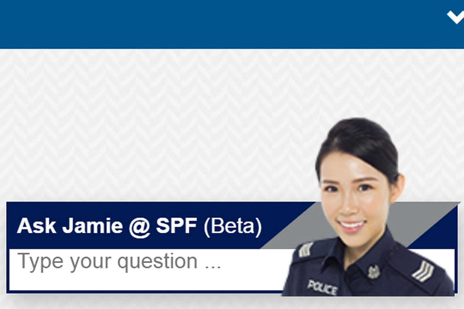 """Jamie, a virtual assistanton more than 50 government agency websites, dons a policewoman's uniform on the Singapore Police Force website. Low-cost airline Scoot's """"intern"""" Marvie helps to book flights and answer frequently asked questions on Facebook"""