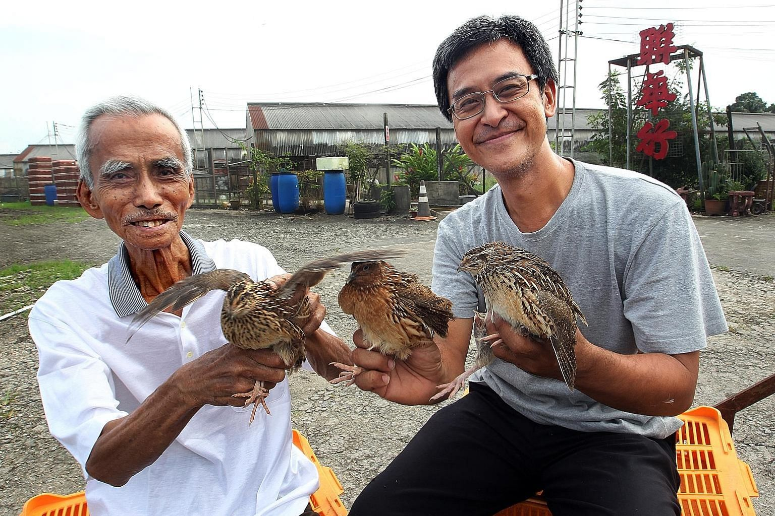 Mr Ho Seng Choon in earlier days with his youngest son William Ho, at their farm in Lim Chu Kang which specialises in quails.
