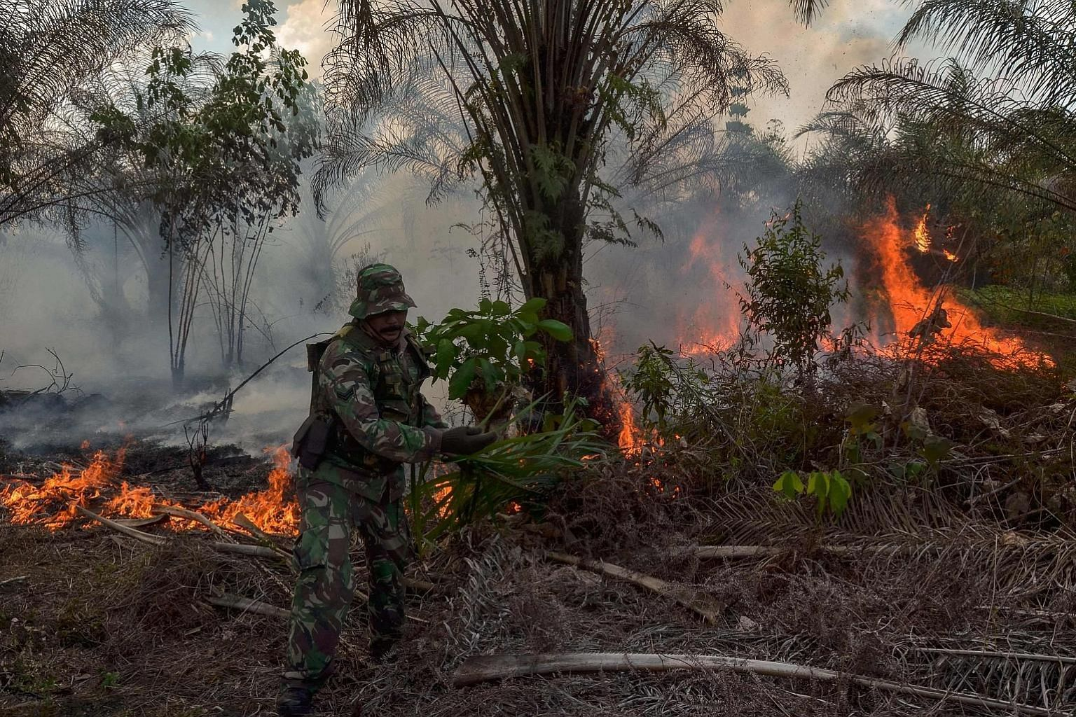 An Indonesian soldier trying to put out a fire at an oil palm plantation in Pekanbaru, Riau province, on Tuesday.