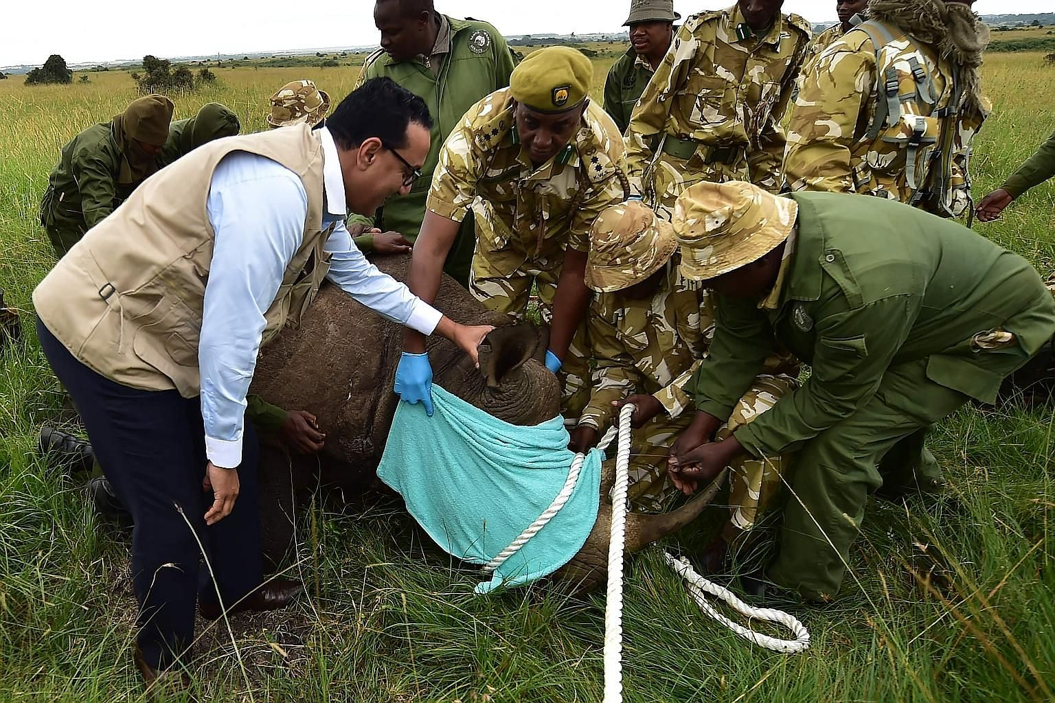 Kenya's Tourism and Wildlife Minister Najib Balala looking on as wildlife services personnel subdued a sedated black rhino in Nairobi National Park for transfer to a new sanctuary in Tsavo East in June.