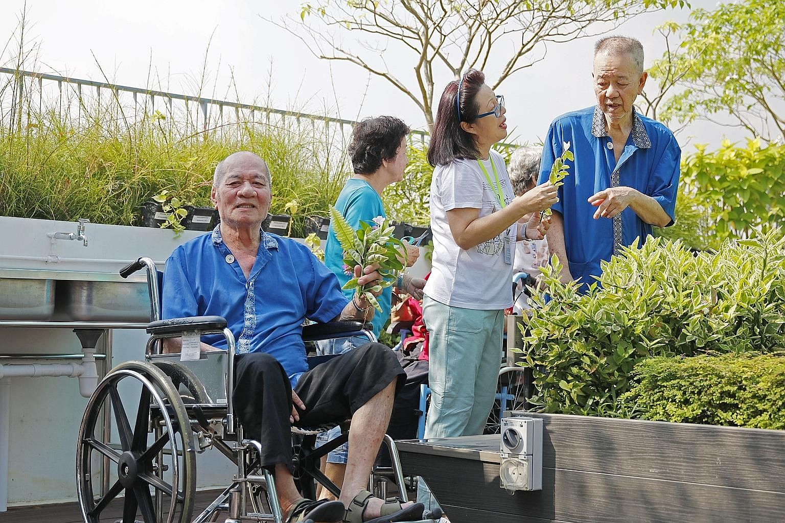 (From left) Mr Tan Soo Siam, 72, with volunteers Ke Sau Keau (side view), 73, and Connie Ho, 64, as well as fellow resident Quek Chin Long, 78, at the rooftop garden of the NTUC Health nursing home in Jurong West. It is the first garden in a nursing