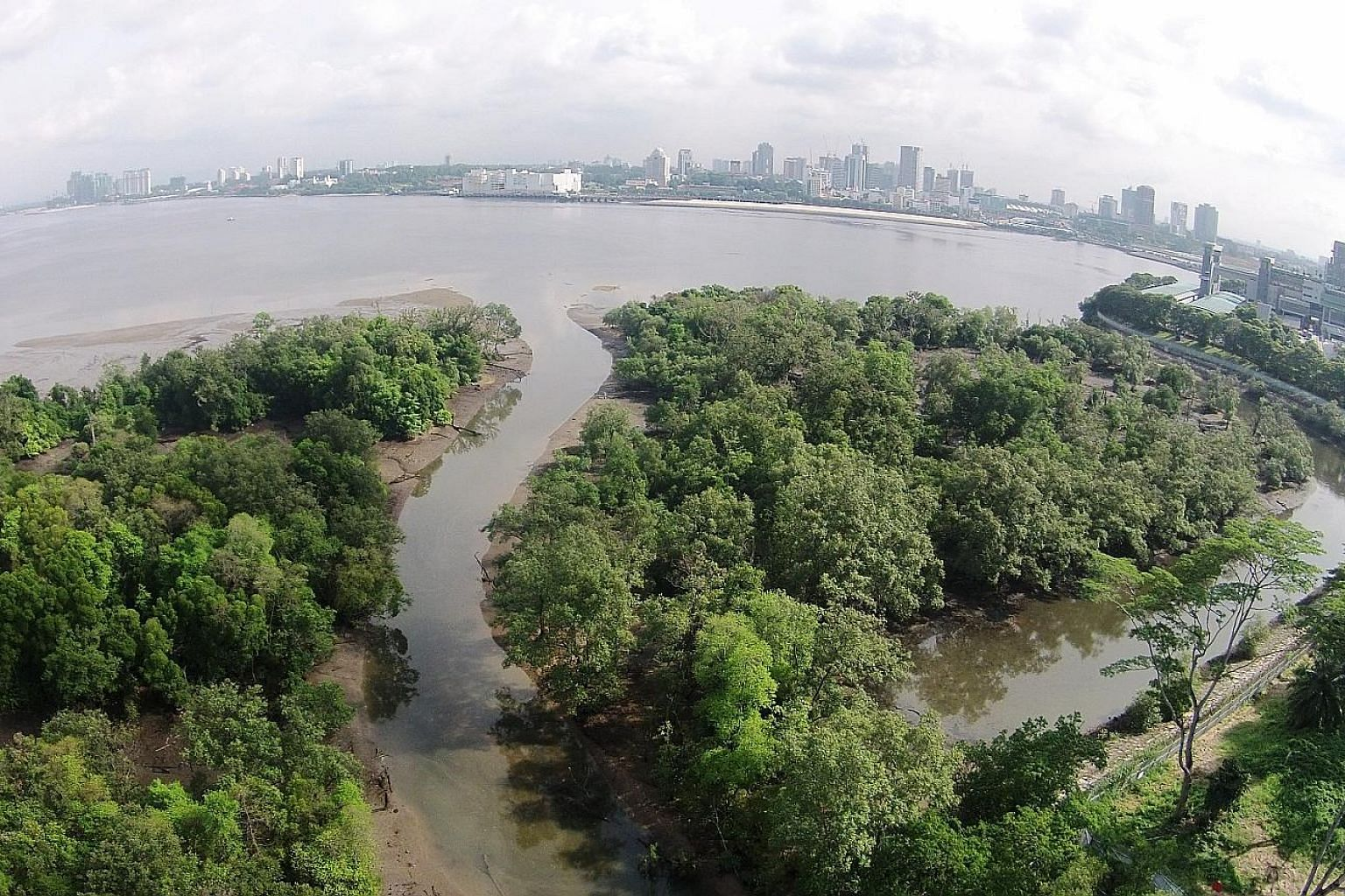 An aerial view of the Mandai Mangrove and Mudflat, which will be designated a nature park. During low tides, the extensive mudflat provides a rich feeding ground for birds. The move to conserve the mudflat was hailed by nature groups as an important