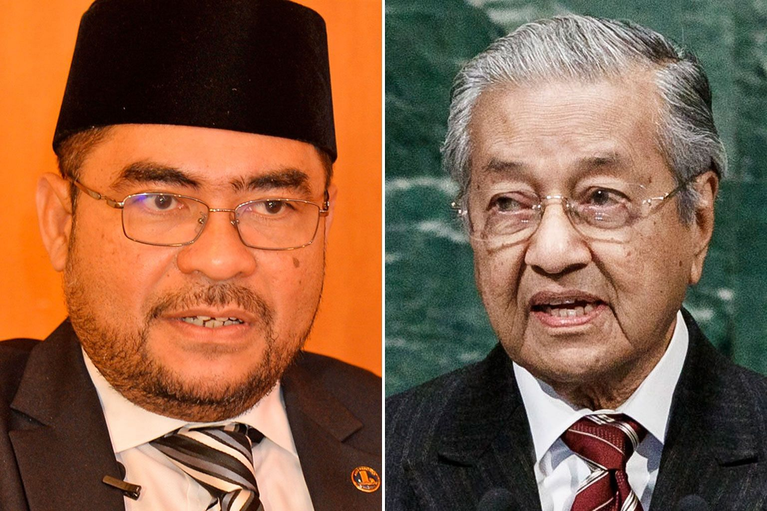 Asked to comment on Datuk Mujahid Yusof Rawa's (left) remarks, Prime Minister Mahathir Mohamad says his government wants to practise a more compassionate form of Islam.