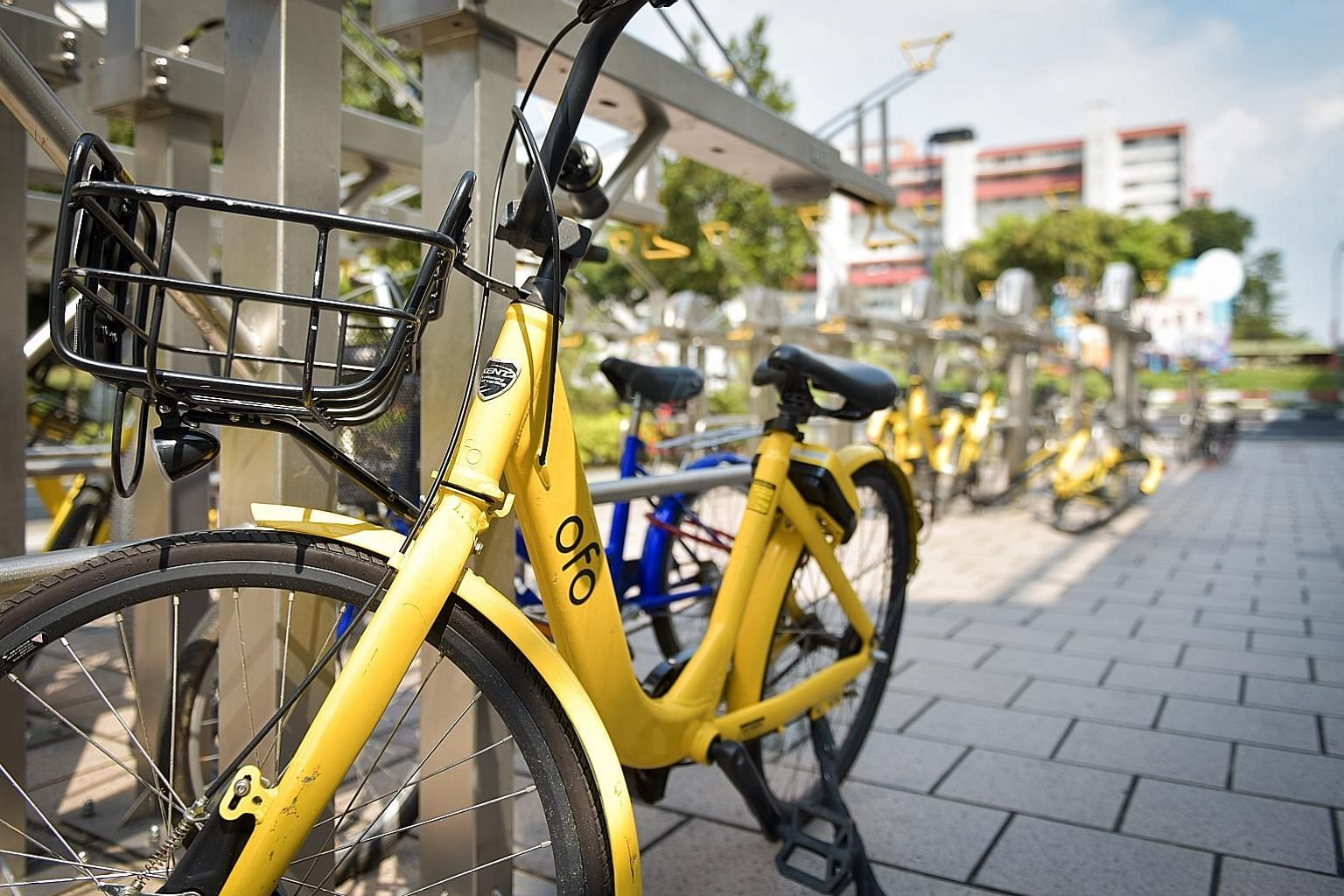 Ofo was originally allowed to have 25,000 bicycles, but the operator had requested to reduce that to 10,000. Both LTA and ofo declined to reveal the actual size of the fleet.