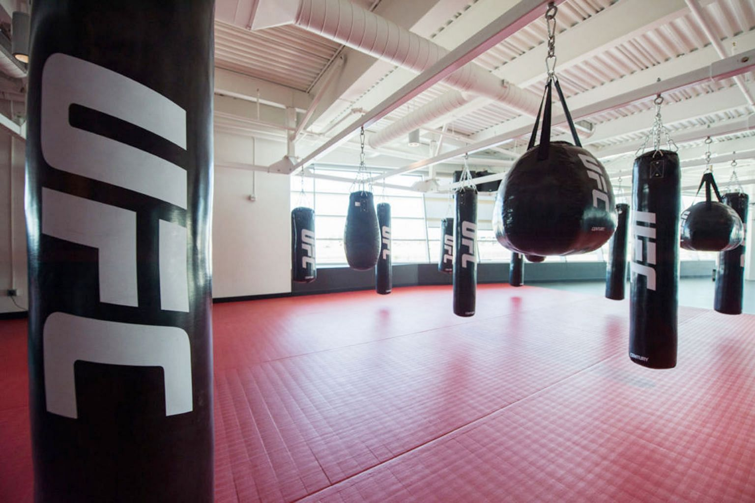 From top: The striking area at the UFC Performance Institute in Las Vegas, with punching bags in varying sizes. The strength and conditioning zone has bilateral force plates built in the ground to measure athletes' explosiveness and peak strength. Th