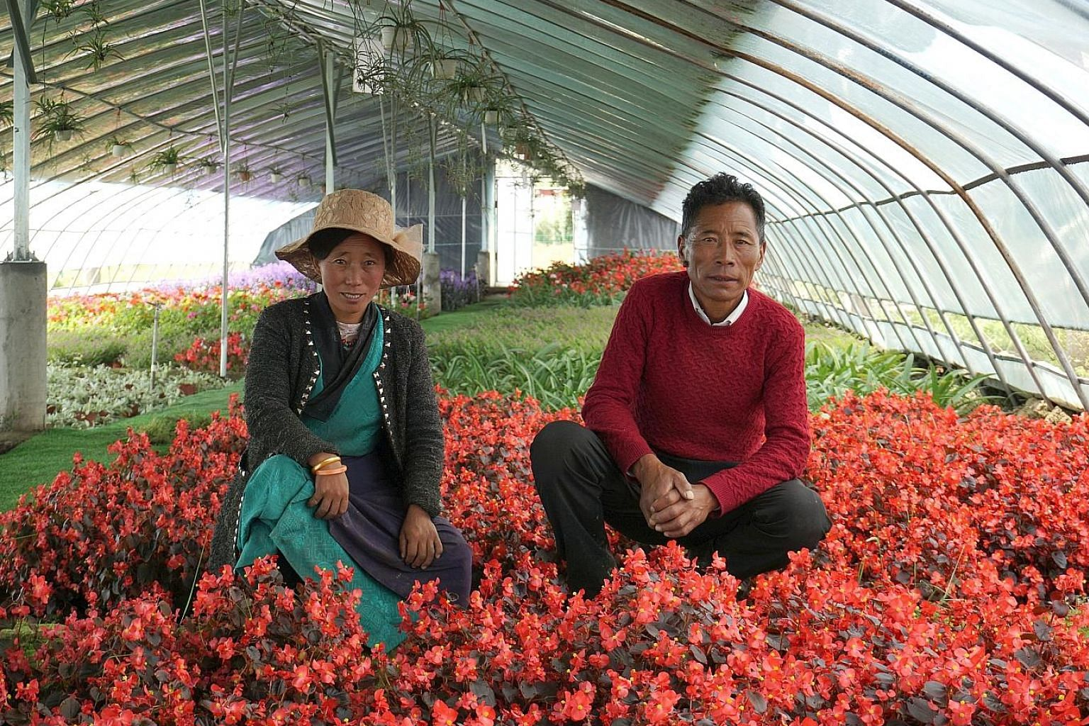 Farmers Lamo Yozhong (left), 33, and Tanzing Laju, 49, in a greenhouse where they work in Qonggyai county. The project is an investment by the local government aimed at paying 3,000 yuan a year to each of the 120 villagers.