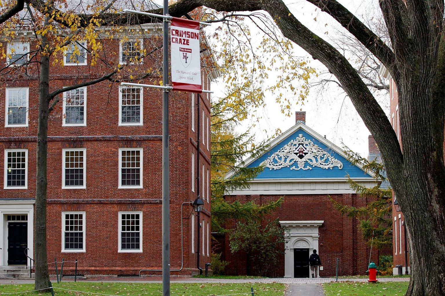Harvard University has chosen not to renew a five-year fellowship programme with the MiSK Foundation, Saudi Crown Prince Mohammed bin Salman's charity, following the October murder of journalist Jamal Khashoggi by a Saudi hit squad.