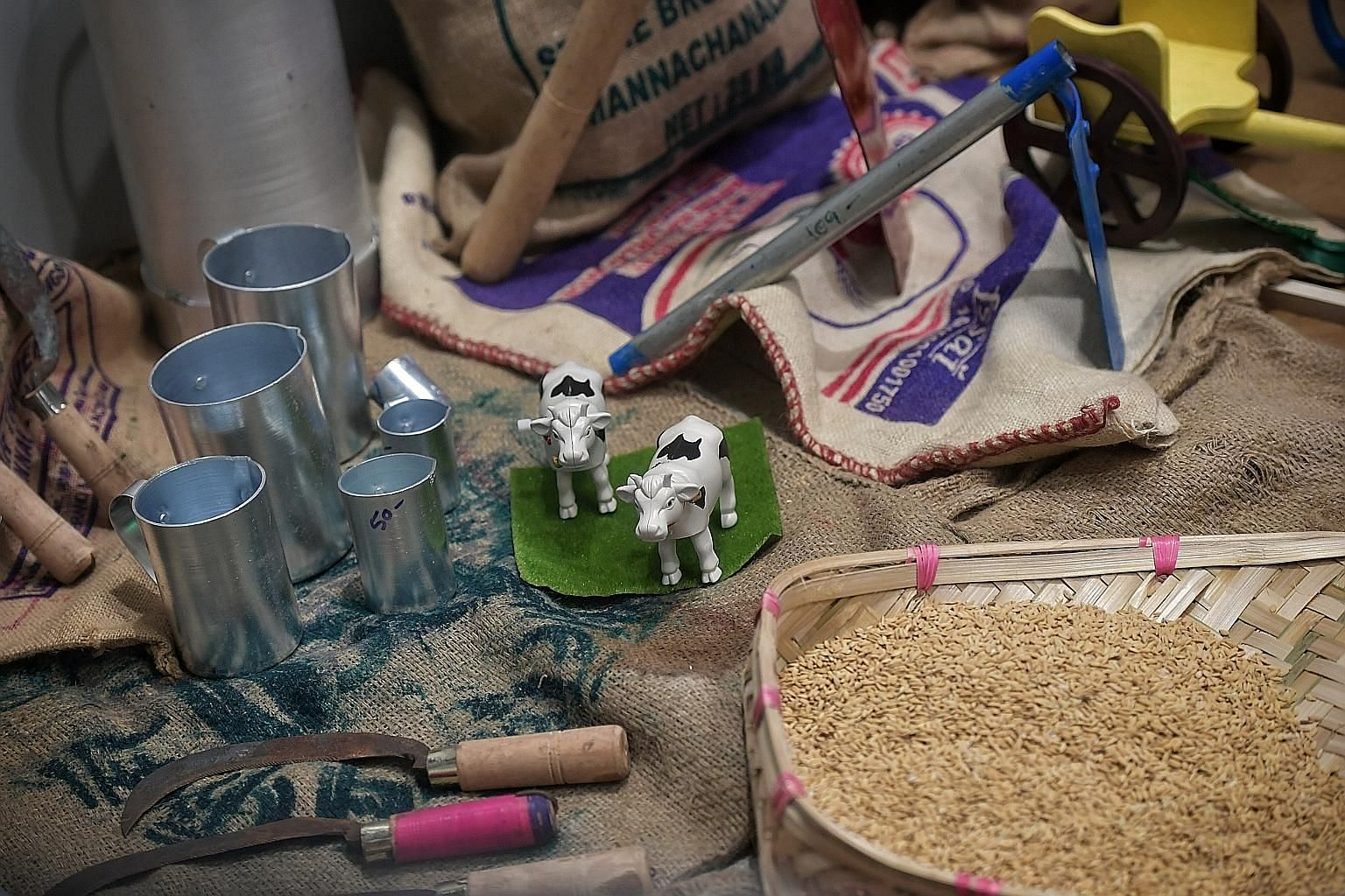 A display showing items significant to Pongal, a Tamil festival, at the Indian Heritage Centre. Pongal, which is celebrated in Singapore from Jan 15 to 17, is named after a traditional sweet pudding cooked with cow's milk.