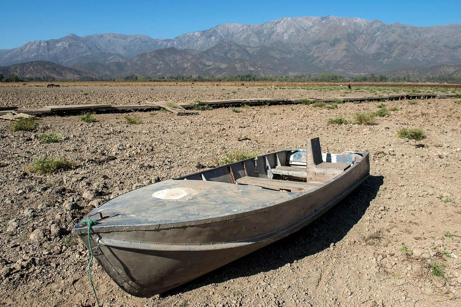 Above: An abandoned boat at the dried-up Lake Aculeo in Paine, about 70km south-west of Santiago, Chile, earlier this month. The lake, which was for decades a major tourist attraction, has disappeared due to a drought and an over-consumption of water