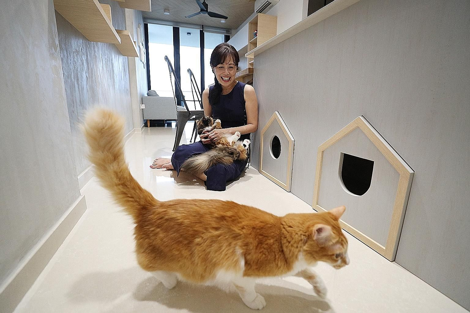 Veterinarian Teo Jenn Lin has a kennel that doubles as a shoe bench (above) and a loft bed with hollowed-out steps as cosy nooks for her shih tzus, Guppy and Squid. Civil servant Yvonne Chan with two of her four adopted cats, Pumpkin and Robin. She h