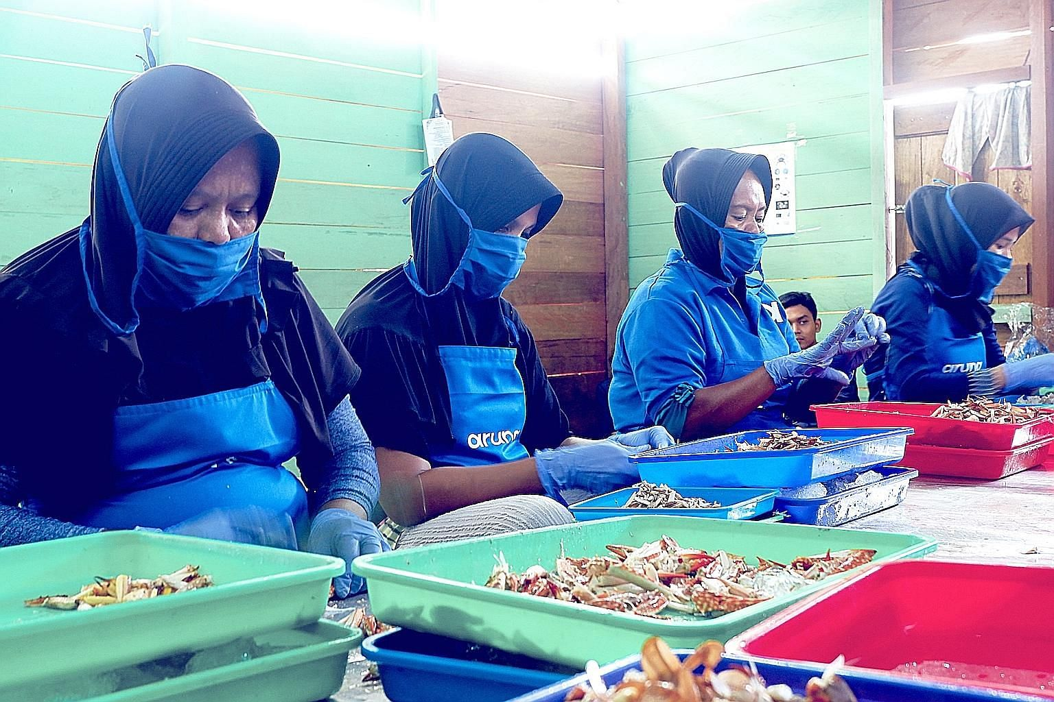 Workers processing blue swimming crabs before shipping them to buyers. An app called Aruna connects Indonesian fishermen directly with buyers in the domestic market as well as overseas.