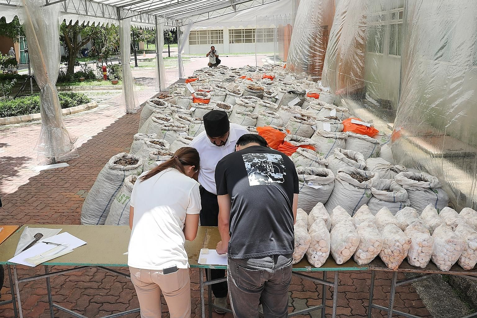 The shipment originated from Nigeria and was bound for Vietnam. A joint operation by Singapore Customs and the National Parks Board found the scales in 230 bags inside a 40ft shipping container (above), along with 177kg of elephant ivory worth $120,0