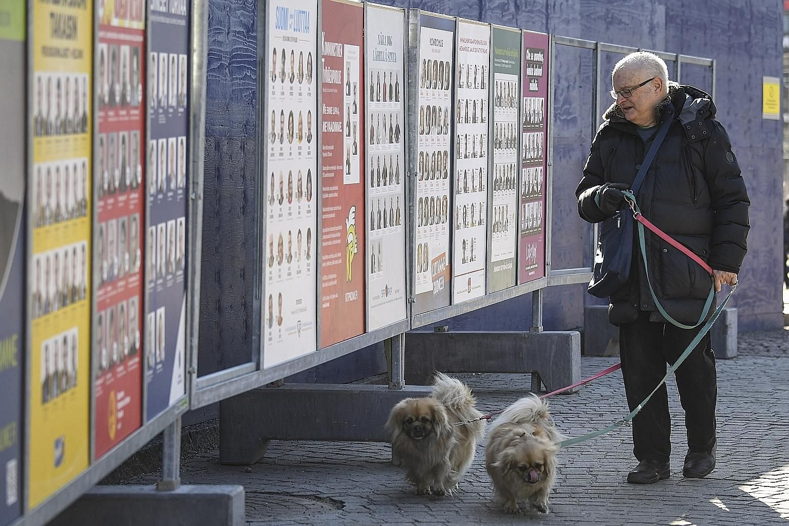A man looking at campaign posters in Helsinki, with the parliamentary elections scheduled to be held in Finland on April 14. The country and its rapidly ageing population is a vivid demonstration that demographic change forces hard choices between po