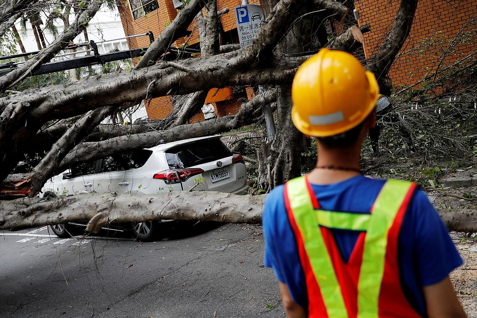A vehicle surrounded by fallen trees in Taipei after an earthquake yesterday.