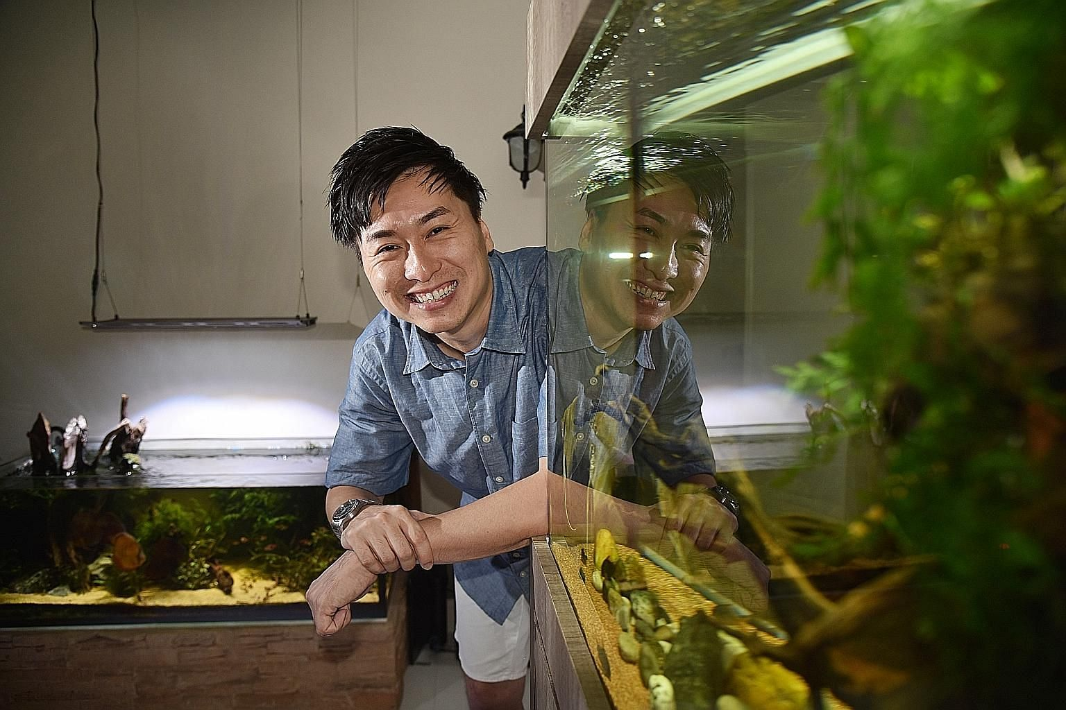 Laboratory technician and aquascaping hobbyist Alvin Wee has three aquascaped tanks, including this one in his living room.