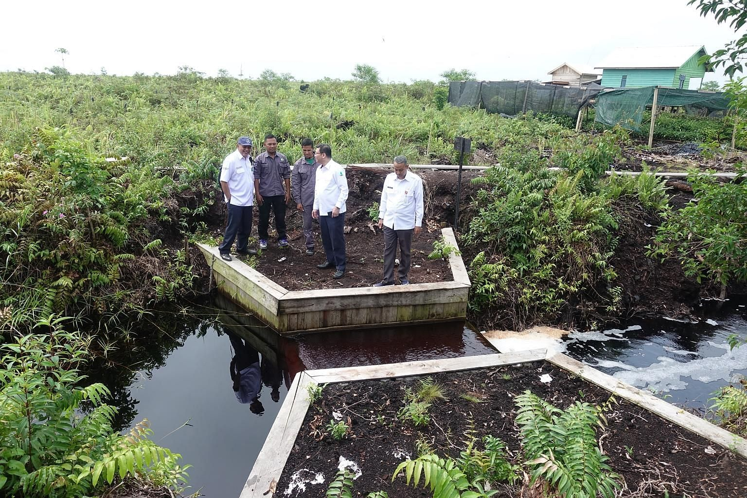 Peatland Restoration Agency head Nazir Foead (centre in white shirt), with other officials, inspecting a dam at a peatland drainage canal in Seponjen, South Sumatra, which was badly burned during the 2015 fires that blanketed the region in haze.